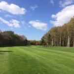 ゴルフとヨーガの相性